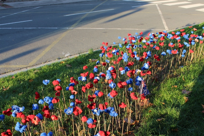 Crocheted poppies honouring the fallen soldiers
